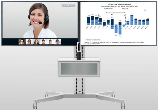 Videotelefonie Software
